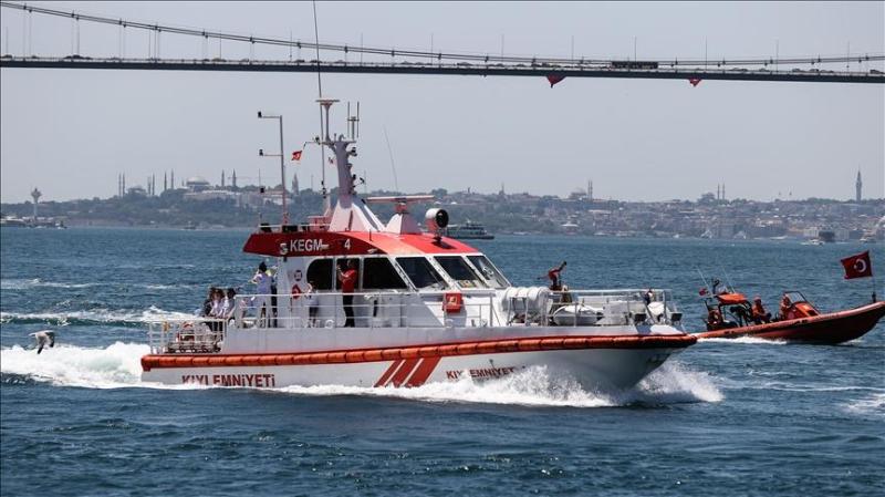 Турецкий и российский сухогрузы столкнулись на Босфоре