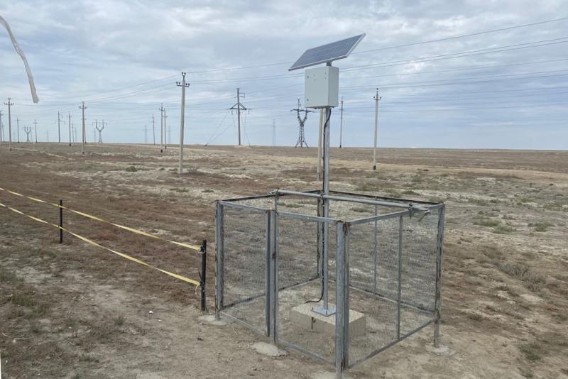 Электротоком будут отпугивать животных от трасс в Атырау