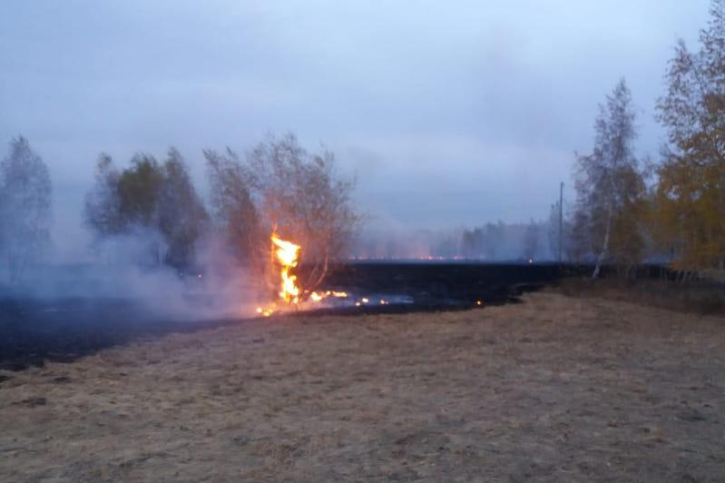 Пожар на 200 гектарах степи и леса тушили костанайские огнеборцы