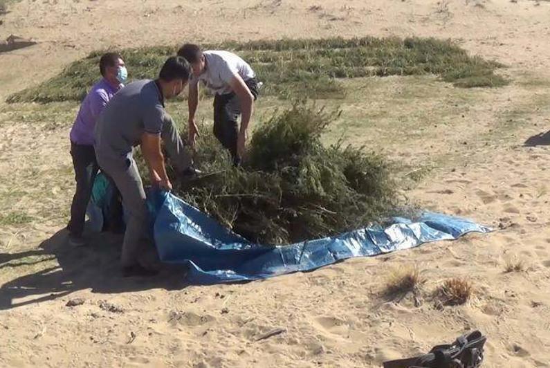 Более 70 кг наркотиков изъяли у сельчанина в Жамбылской области