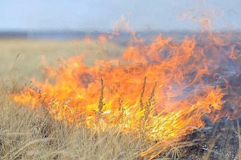 Алматы облысының таулы аймақтарынан тағы да өрт шықты