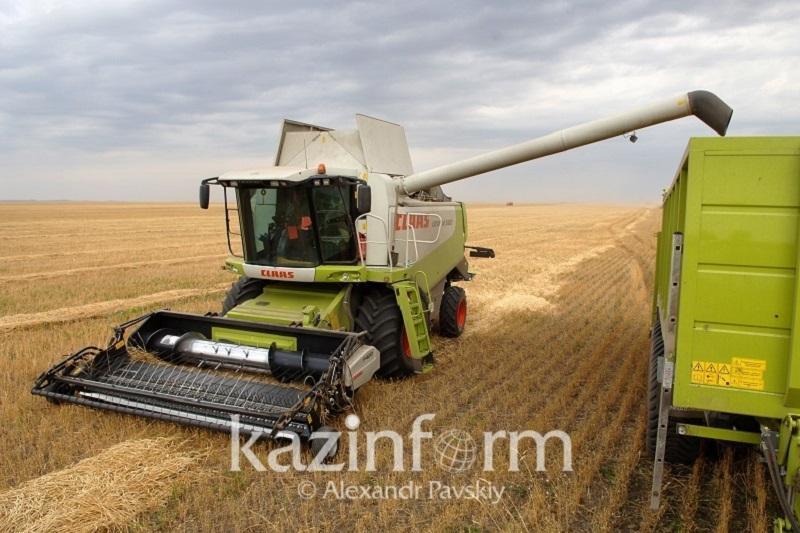 Когда завершат уборку зерновых в Казахстане