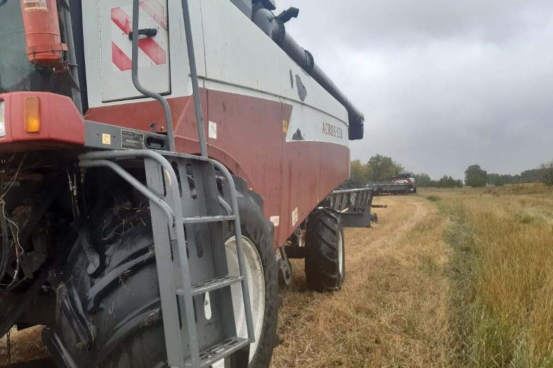 Кражу партии пшеницы раскрыли полицейские СКО