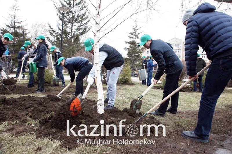 Kazakhstan to plant 2 bln trees up until 2025 – President