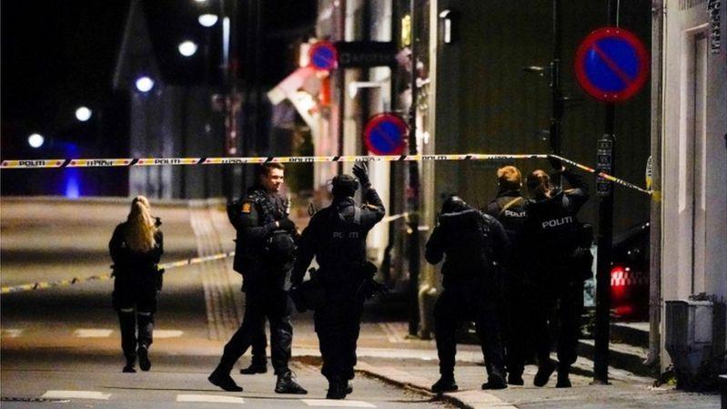 В Норвегии несколько человек убиты мужчиной, вооруженным луком и стрелами