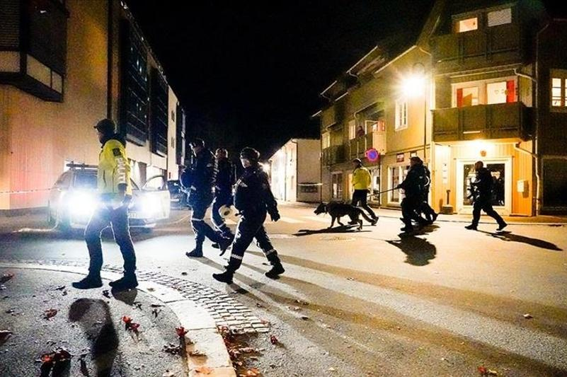 At least 5 people killed in bow and arrow attack in Norway