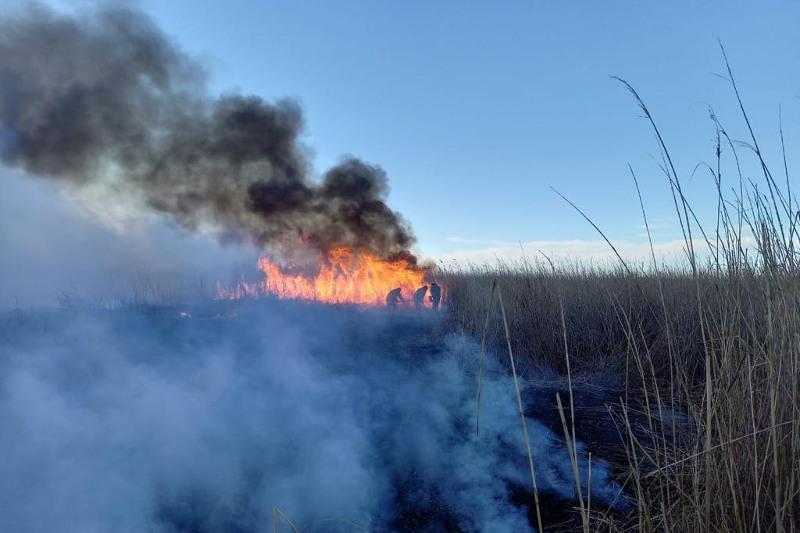 Пожар на побережье Каспияпродолжают тушить в Атырауской области