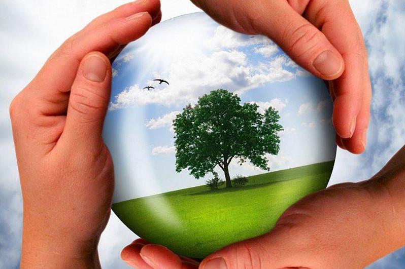 ЖЕЭК отырысы: Қазақстан Президенті экологиялық қауіпсіздікке қатысты пікір білдірді