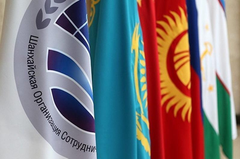 总统:欧亚经济联盟成员国应加强与上合组织之间的合作
