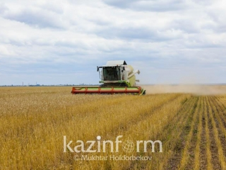 Kazakhstan to export 9 mln tons of wheat