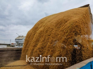 Kazakhstan, Russia to ink wheat supply agrt with Iran