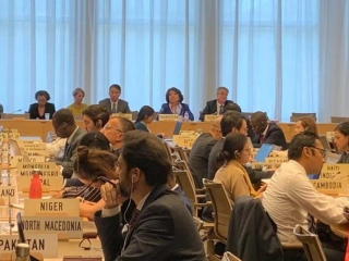 WTO: Liberalization of access to tourism services market discussed under Kazakh chairmanship