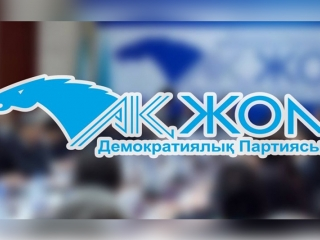 Ak Zhol Party to name candidate for 2019 Presidential Election