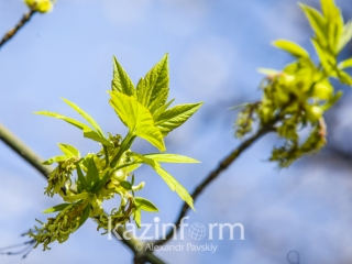 Kazakhstanis to enjoy sunny weather May 9