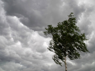 Thunderstorm and stiff wind forecast for Kazakhstan on Monday