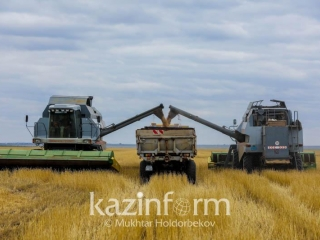 Tokayev suggests developing program of agricultural cooperation with Russia