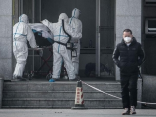 China confirms human-to-human transmission of 2019-nCoV, infections among medical staff