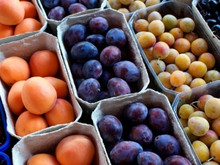 Kazakhstan suspends imports of some fruits from China