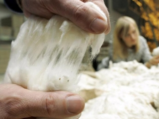 Kazakhstan to triple domestic cotton processing