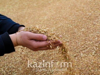 Agriculture Minister unveils country's grain reserves