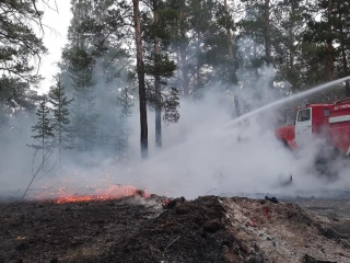 Forest fire in East Kazakhstan rgn being extinguished around the clock