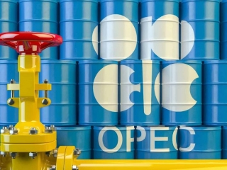 OPEC daily basket price stood at $36.55 a barrel Thursday