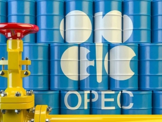 OPEC daily basket price stood at $35.06 a barrel Friday
