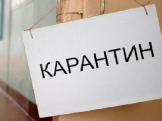 Kostanay rgn to toughen quarantine regulations