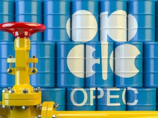 OPEC daily basket price stood at $43.15 a barrel Tuesday