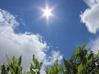 Weather without precipitation in store for Kazakhstan on July 9