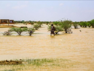 At least 8 people die in floods in eastern Sudan