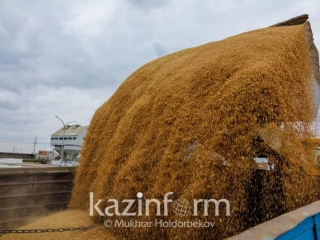 Kazakhstan aims to collect 18mln tons of grains this year