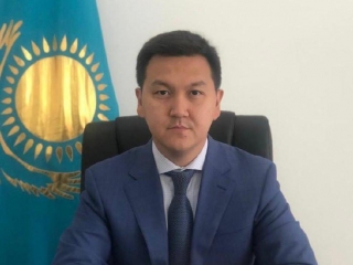 Deputy head of Kazakh industrial development committee named