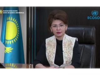 Kazakh Information and Social Development Ministry proposes to hold environmental campaign with youth of UN countries