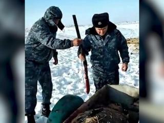 За незаконную охоту на кабана осужден житель Жамбылской области