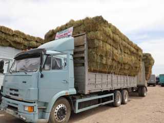 33 вагонов сена отправили из Туркестанской области фермерам западных регионов страны